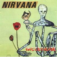Nirvana - Incesticide [20th Anniversary 45rpm Edition] - Vinyl