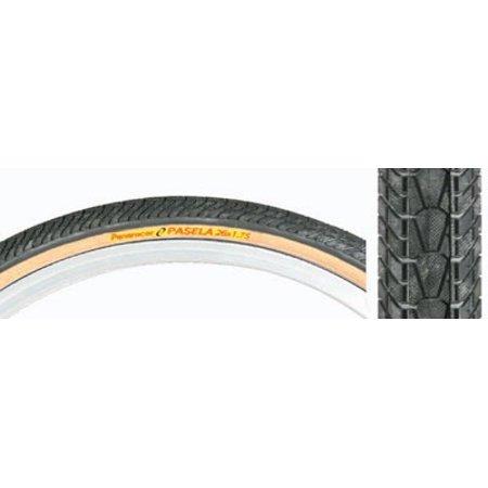 Pasela 700 x 32 cm Wire Bead Tire