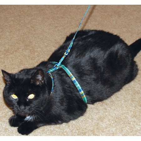 Nylon Cat Harness with Matching 46