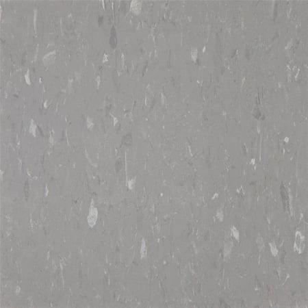 Pewter Tiles (Congoleum Pewter Vct Tile AL236181 )
