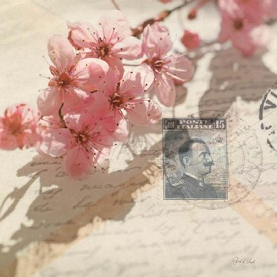 Vintage Letters and Cherry Blossoms Poster Print by Deborah Schenck (15 x 15)