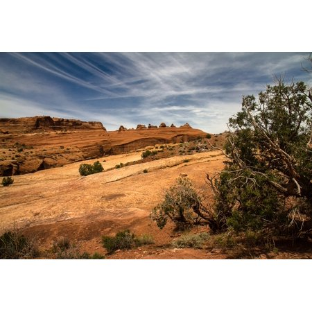 L N Stick Poster Of Arches National Park Usa 24x16
