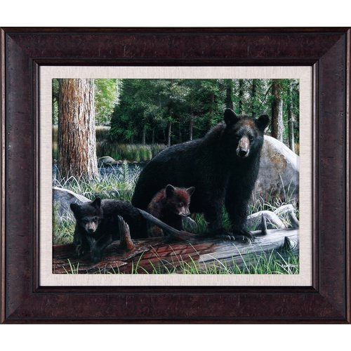 Art Effects New Discoveries by Kevin Daniel Framed Photographic Print