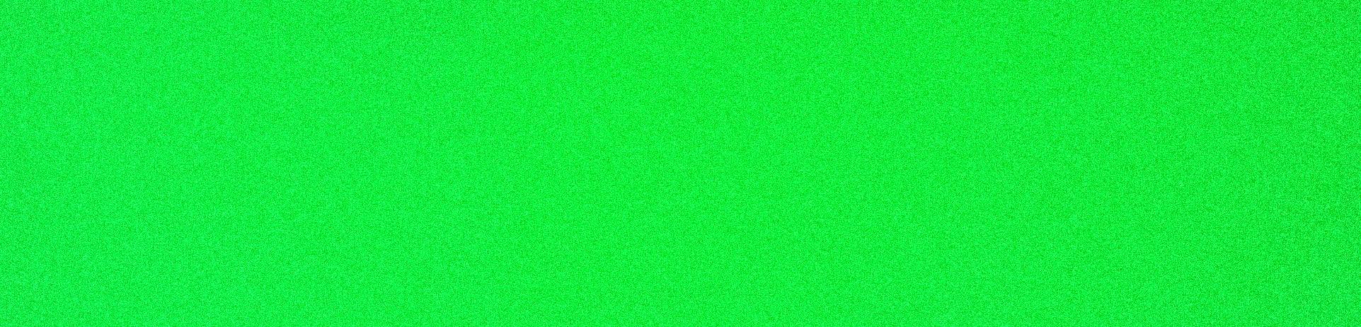 10X48in LONGBOARD SKATEBOARD GRIPTAPE Neon Green Pro Grip Tape by Black Diamond by