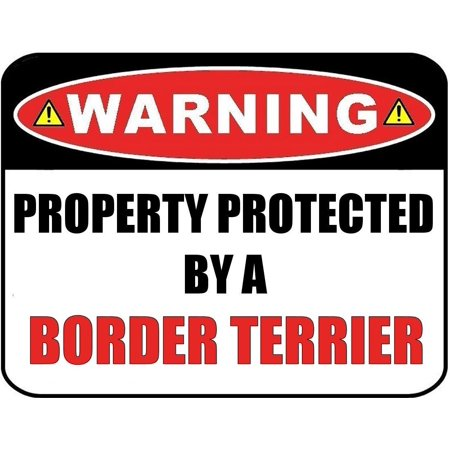 Warning Property Protected by a Border Terrier 9 inch x 11.5 inch Laminated Dog Sign