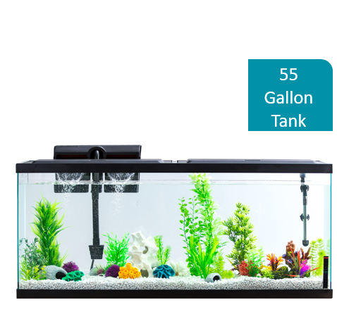 Aqua Culture 5-15 Gal Aquarium Hydroponic Air Pump 1 Outlet 1 Check Valve Bracing Up The Whole System And Strengthening It Fish & Aquariums Pumps (water)