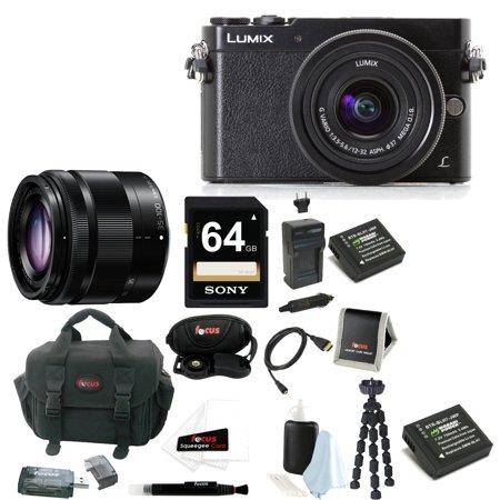 Panasonic Lumix DMC-GM5 Compact System Camera + Panasonic 35-100mm f/4-5.6 Interchangeable Zoom Lens + Sony SF64UY2TQ 64