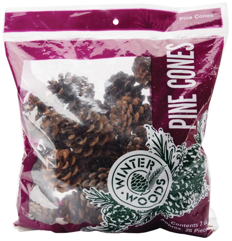 Winter Woods Natural Red Pine Cones, 7 oz/pkg