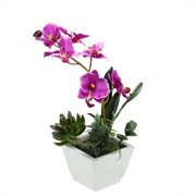 """Northlight 12"""" Orchid with Succulent Artificial Potted Plant - Pink"""