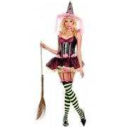 Pink Witch Adult Costume - Medium/Large