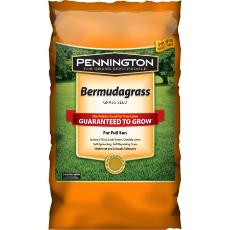 Pennington Bermudagrass, Grass Seed For Full Sun, 5