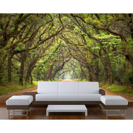 "Wall Installation Tunnel (Startonight Mural Wall Art Trees Tunnel Illuminated Nature Landscapes Wallpaper Photo 5 Stars Gift Large 10 x 28,82 '' x 50,4 '' Total 8'4""x 12' )"