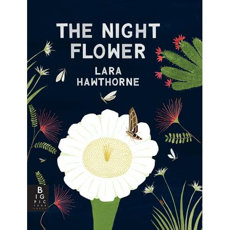 The Night Flower: The Blooming of the Saguaro (Saguaro Night Light)