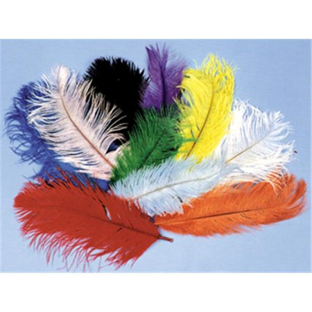 costumes for all occasions bb05yw ostrich plumes 12 to 16in yw (Pheasant Feathers For Sale)