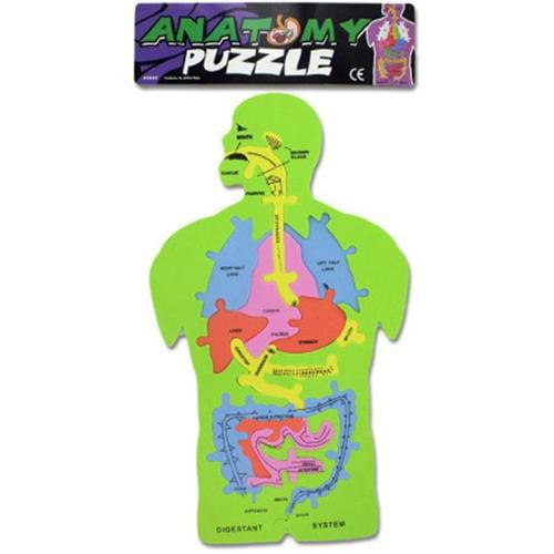 Bulk Buys Foam Anatomy Puzzle, Case of 24