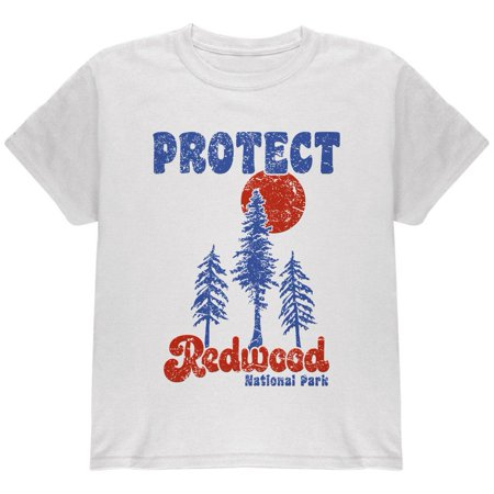National Park Retro 70s Landscape Protect Redwood Youth T Shirt](70s Items)