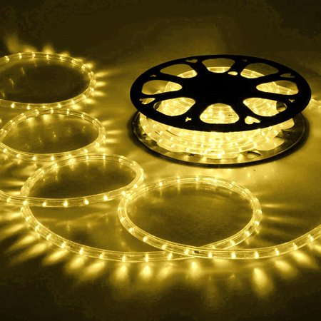 DELight 150ft Warm White 2 Wire LED Rope Light Outdoor Home Holiday Valentines Party Restaurant Cafe Decor