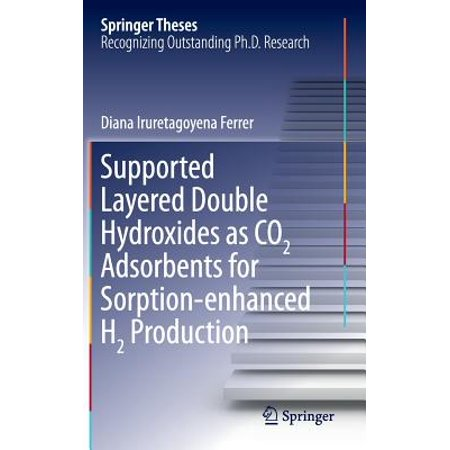Supported Layered Double Hydroxides as Co2 Adsorbents for Sorption-Enhanced H2 - Double Layer Support