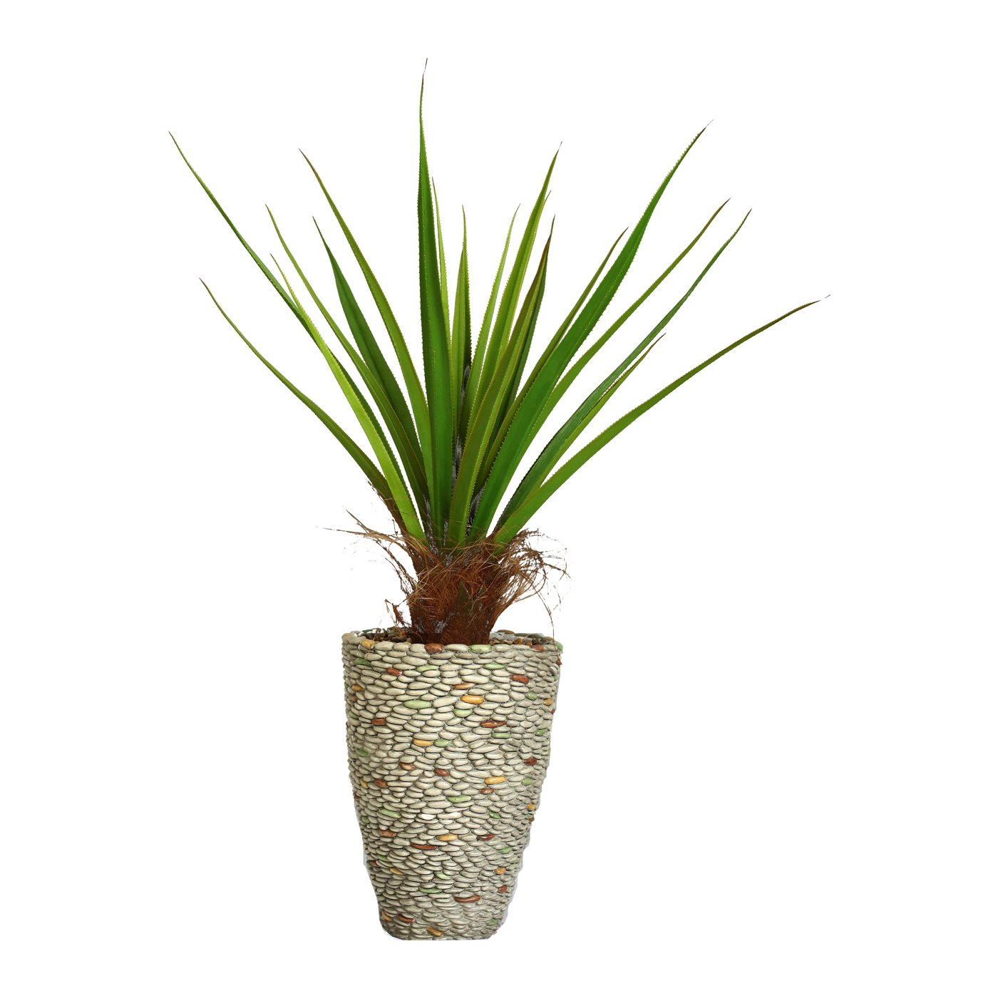 58-in Tall Agave Plant with Cocoa Skin in 16-in Fiberstone Planter