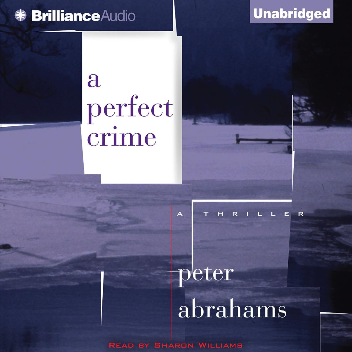 Perfect Crime, A - Audiobook