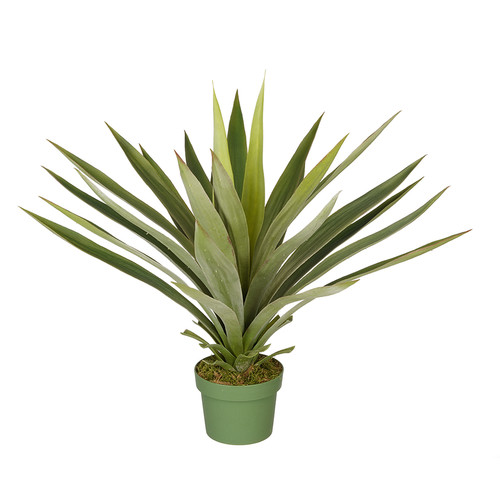 House of Silk Flowers Inc. Artificial Large Yucca Plant