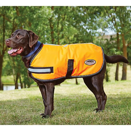 WeatherBeeta Reflective Parka 300D Dog Coat 32