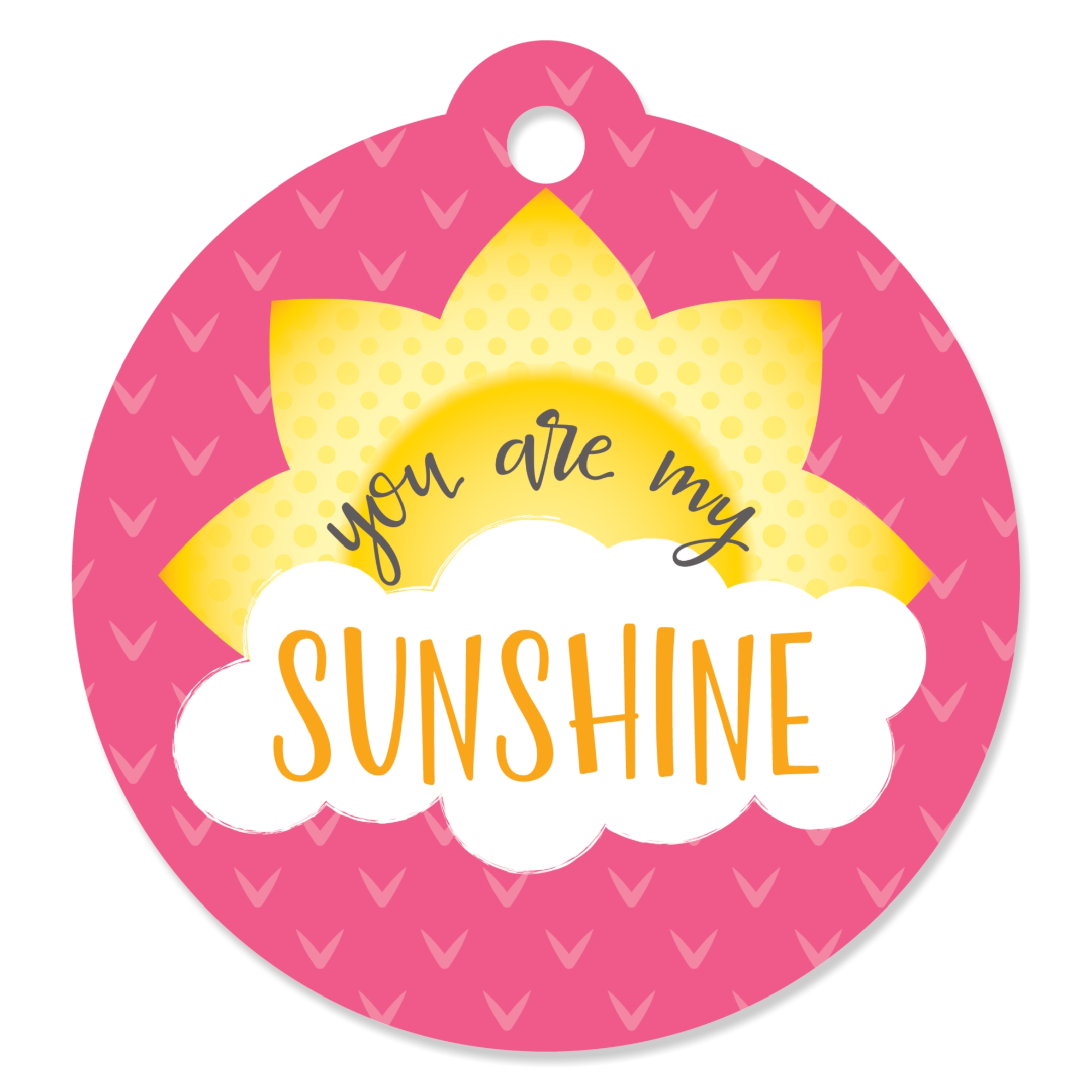 You Are My Sunshine - Baby Shower or Birthday Party Favor Gift Tags (Set of 20)