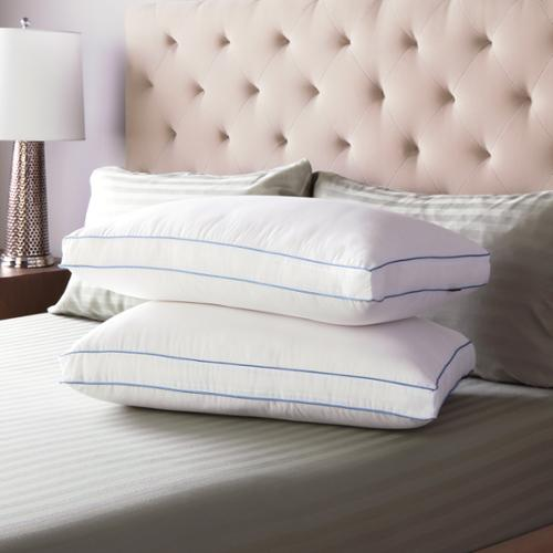 SwissLux  Extra Firm Density Gusseted Pillows (Set of 2)