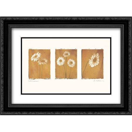 206 Matt - White Gerbers 2x Matted 24x18 Black Ornate Framed Art Print by Melious, Amy