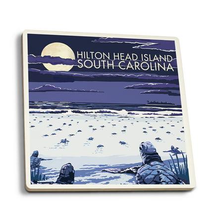 Hilton Head South Carolina Baby Turtles Hatching Lantern Press
