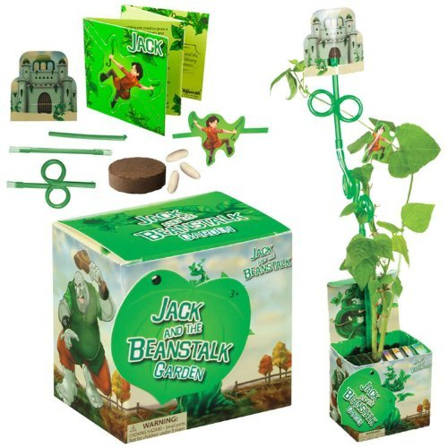 Jack and the Beanstalk Garden Multi-Colored