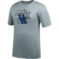 Men's Gray Kentucky Wildcats Secondary Logo T-Shirt