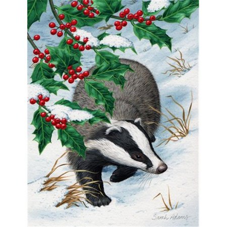 Carolines Treasures ASA2039CHF Badgers With Holly Berries Flag Canvas House Size - image 1 de 1