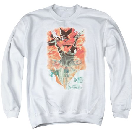 DC Comics 2011 Batwoman Issue Number One Cover Art Adult Crewneck -