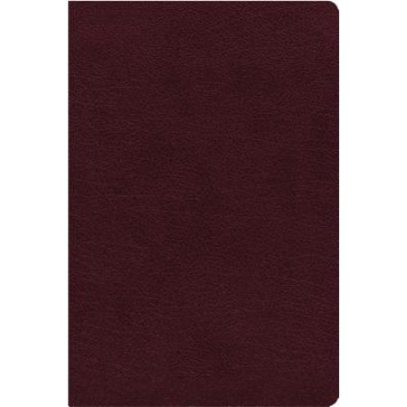 NIV, Thinline Reference Bible, Large Print, Bonded Leather, Burgundy, Red Letter Edition, Indexed, Comfort Print