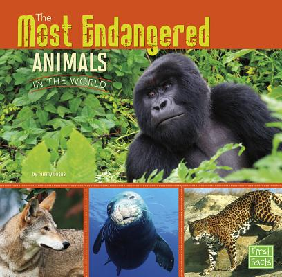 All about Animals: The Most Endangered Animals in the World (Paperback)