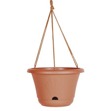 Bloem Hanging Basket 13