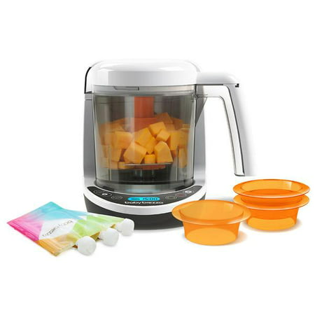 Baby Brezza Deluxe 2-in-1 Baby Food Maker (Baby Brezza One Step Baby Food Maker Reviews)