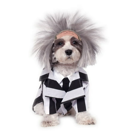 Beetlejuice Cape - Halloween Beetlejuice Pet Costume