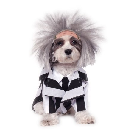 Halloween Beetlejuice Pet Costume - Deluxe Beetlejuice Costume