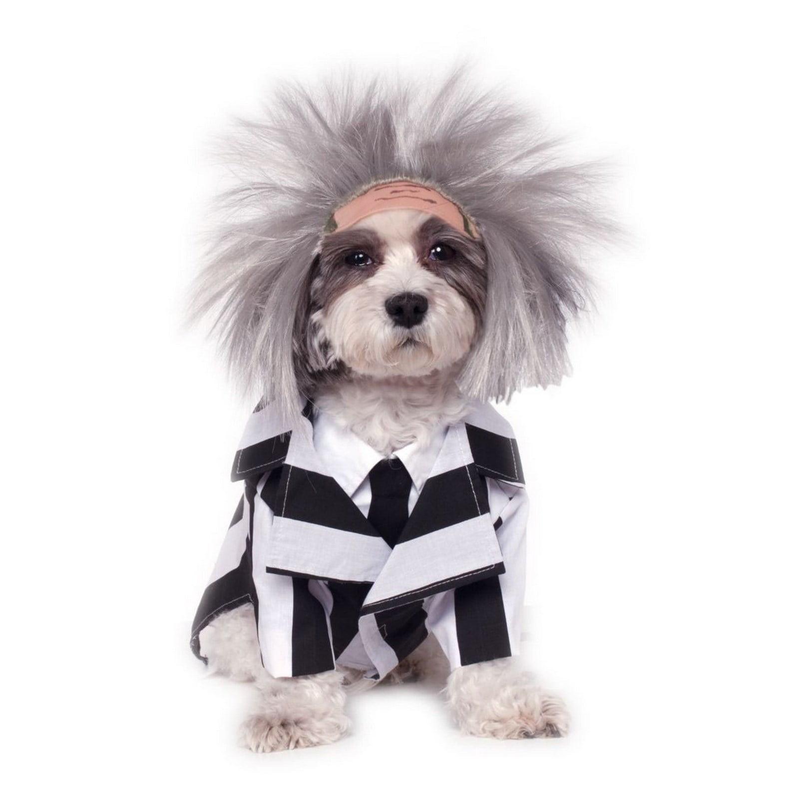 Halloween Beetlejuice Pet Costume