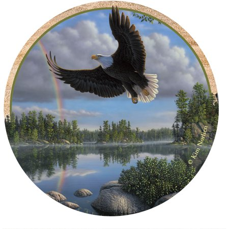 Thirstystone Drink Coasters Set, Eagle