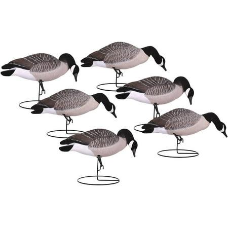 canada goose type brands