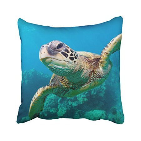 WinHome Square Throw Pillow Covers Vintage Green Sea Turtle Swimming Over Coral Reef Hawaii Pillowcases Polyester 18 X 18 Inch With Hidden Zipper Home Sofa Cushion Decorative Pillowcase