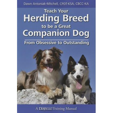 Herding Cats (Teach Your Herding Breed to Be a Great Companion Dog, from Obsessive to Outstanding)