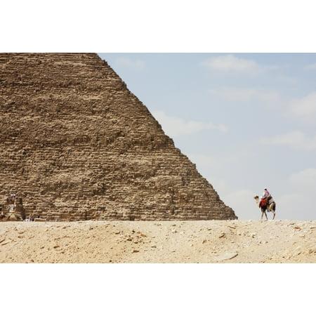 Great Pyramid Of Khufu (Cheops) And Camel Driver Giza Al Jizah Egypt Stretched Canvas - Peter Langer  Design Pics (19 x (Khufu Pyramid Giza)