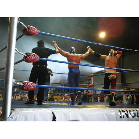 - LAMINATED POSTER Mexico Passion Blue Demon Wrestling Poster Print 24 x 36