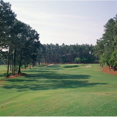 17th hole at golf course Pinehurst Resort Pinehurst Moore County North Carolina USA Canvas Art - Panoramic Images (24 x