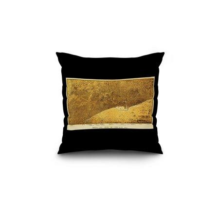 Chicago Illinois Panoramic Map 18x18 Spun Polyester Pillow Black Borde