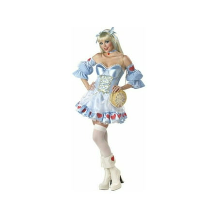 Adult Alice in Wonderland Costume - Cheap Alice In Wonderland Costumes